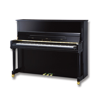 Fridolin Upright Piano for Sale in MA