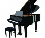Baldwin Grand Piano | Model BP190